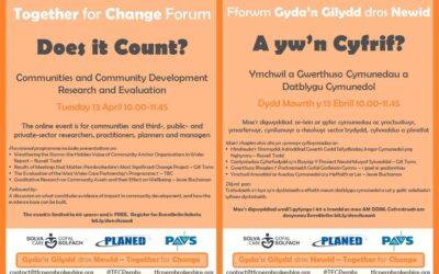 Together for Change Forum – Does it Count? | Fforwrm Gyda'n Gilydd dros Newid – A yw'n Cyfrif?